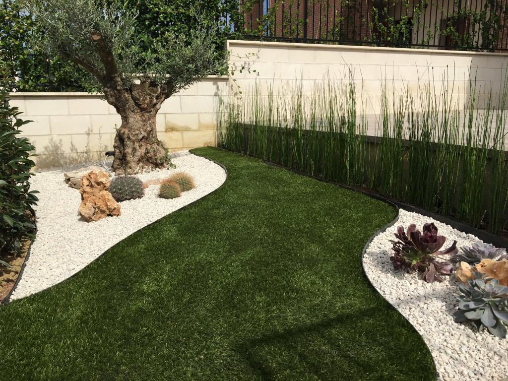 Giardino con olivo centenario